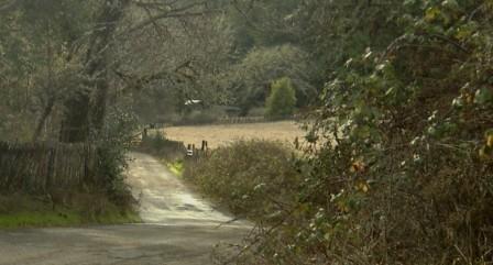cropped-bevs-road1.jpg